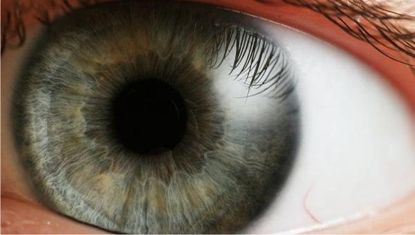 Control de presión ocular gratuito se realiza el jueves 12 en procura del fomento a la consulta oftalmológica para lograr una detección del Glaucoma